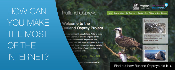 Find out how Rutland Ospreys use the power of the web